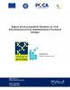 Raport privind asumarile Romaniei la nivel international privind