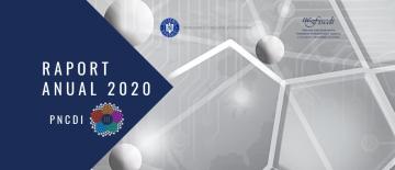 raport anual 2020